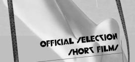 selezione ufficiale cortometraggi 16a edizione lucania film festival 2015